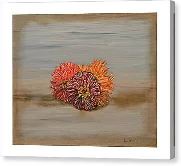 Zinnia Canvas Print by Leo Gehrtz