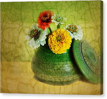 Zinnia Still Life Canvas Print by Nikolyn McDonald