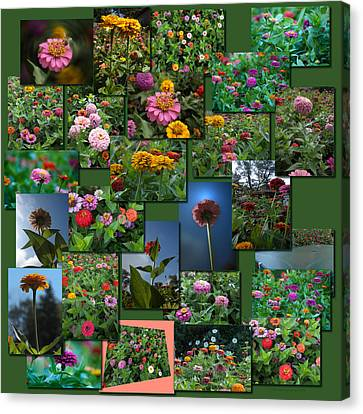 Zinnias Collage Square Canvas Print by Thomas Woolworth