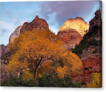Zion Cliffs Autumn Canvas Print by Leland D Howard