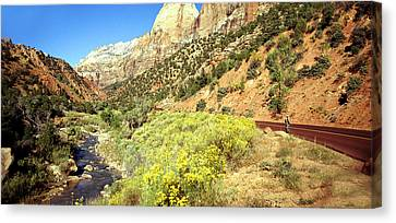 Zion Cyclist Canvas Print