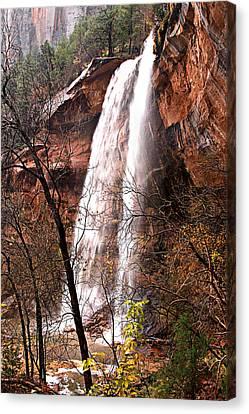 Zion Falls Canvas Print by Darryl Wilkinson