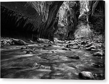Zion Narrows Canvas Print by Andrew Soundarajan