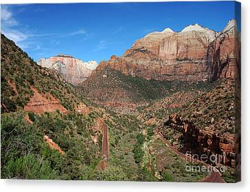 206p Zion National Park Canvas Print by NightVisions