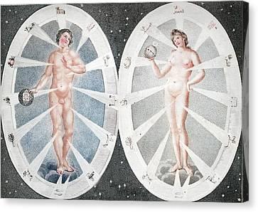 Zoadiac Adam And Eve Canvas Print by Paul D Stewart