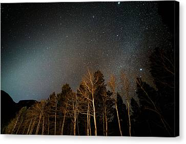 Copyright 2013 By Mike Berenson Canvas Print - Zodiacal Light Meets Winter Milky Way by Mike Berenson