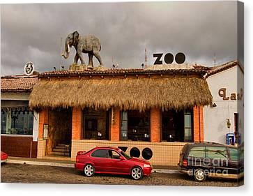 Zoo Bar Canvas Print by Mark Baker