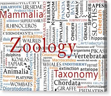 Zoology 1 - Mammals In Typography Canvas Print