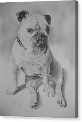 Zsu Zsi Canvas Print by Melanie Spencer
