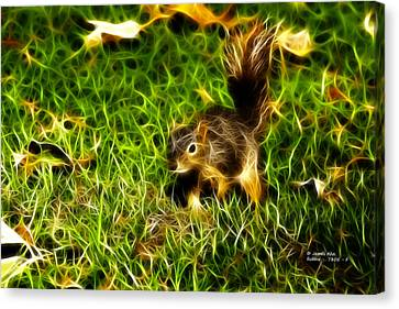 - Fractal - Pointer - Robbie The Squirrel Canvas Print by James Ahn