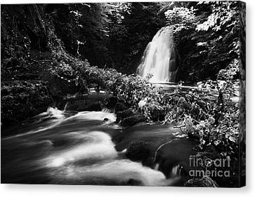 Gleno Or Glenoe Waterfall Beauty Spot County Antrim Northern Ireland Canvas Print by Joe Fox