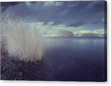 Canvas Print featuring the photograph  Infrared At Llyn Brenig by Beverly Cash