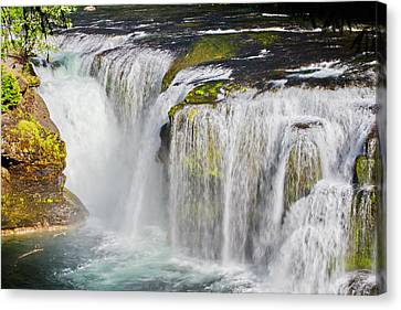 Lower Falls On The Upper Lewis River Canvas Print