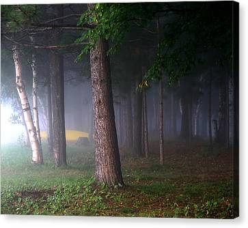 Morning Mist Canvas Print by Jim Nelson
