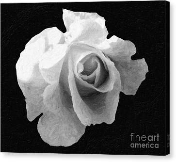 My Forgotten Rose Canvas Print by AHcreatrix