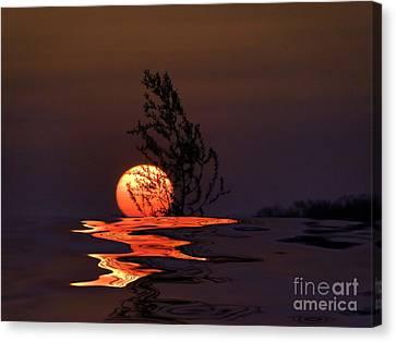 Our Sun Canvas Print by Renate Knapp