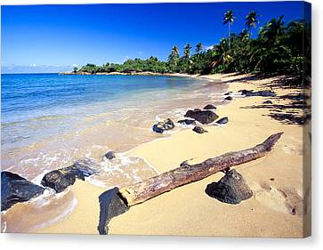 Pinones  Beach Scenic Canvas Print by George Oze