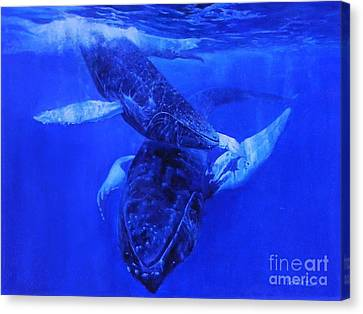 Playful Humpbacks Canvas Print by Noe Peralez