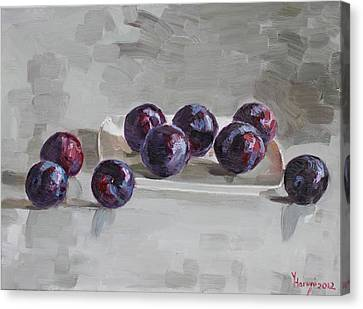 Plums Canvas Print by Ylli Haruni