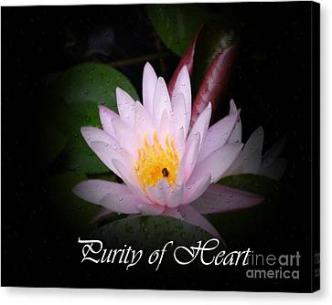 Purity Of Heart Canvas Print