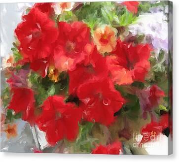 Red Petunia Canvas Print by Hai Pham