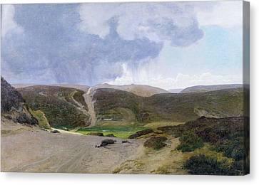 Scandinavian Landscape  Canvas Print by Janus la Cour