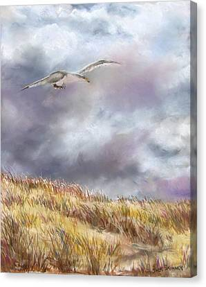 Seagull Flying Over Dunes Canvas Print by Jack Skinner