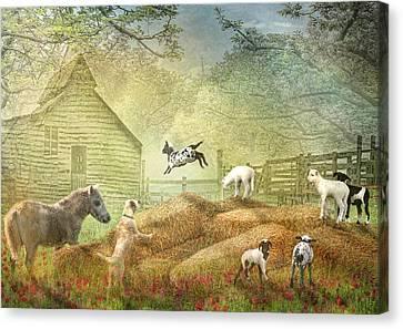 Canvas Print by Trudi Simmonds
