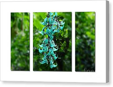 Turquoise Jade Vine  Canvas Print by Elaine Manley