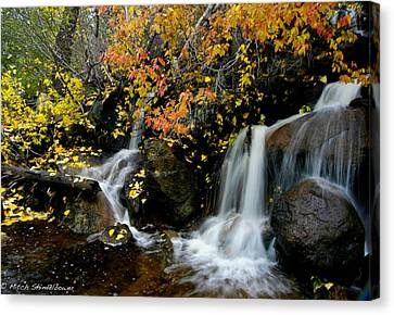 Canvas Print featuring the photograph  Waterfall by Mitch Shindelbower