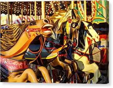Wild Carrousel Horses  Canvas Print by Garry Gay