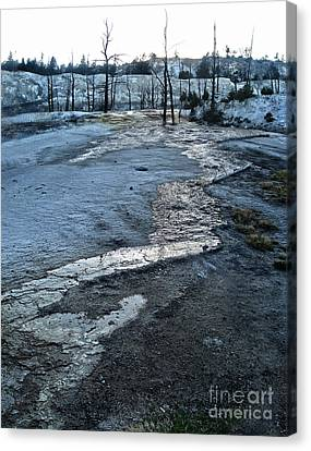 Yellowstone National Park - Minerva Terrace - Desolation Canvas Print by Gregory Dyer