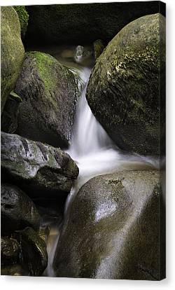 0706-0138 Smith Creek Rocks Canvas Print by Randy Forrester
