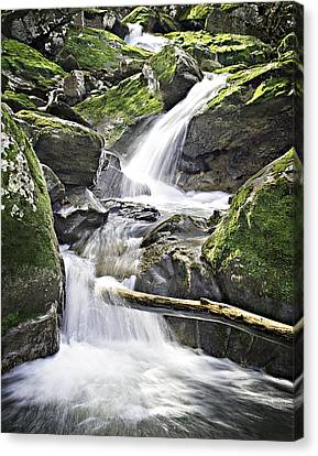 0804-0035 Cascade Above Triple Falls Canvas Print by Randy Forrester