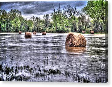 0804-3586 Flooded Hay Canvas Print by Randy Forrester