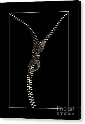 Zip Canvas Print by Odon Czintos