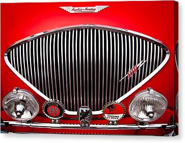 1955 Austin Healey 100-4 Canvas Print by David Patterson