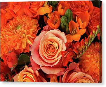 A Close-up Of A Bouquet Of Flowers Canvas Print by Nicholas Eveleigh