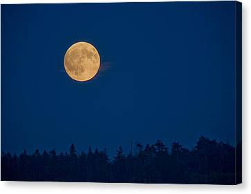 A Full Moon On A Summer Night Canvas Print by Taylor S. Kennedy