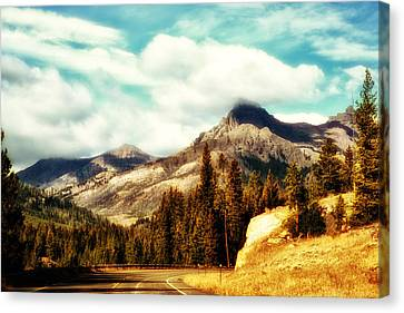 Canvas Print featuring the photograph A Mountain Drive by Kelly Reber