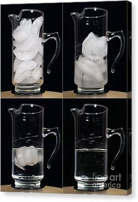 A Pitcher Of Ice Melts Over 4 Hours Canvas Print by Ted Kinsman