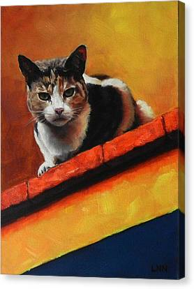 A Top Cat In The Shadow Canvas Print