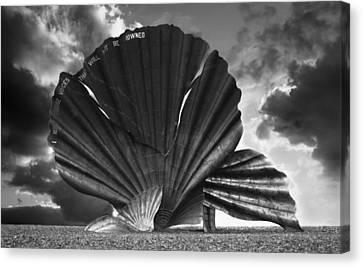 Aldeburgh Scallop Canvas Print by Darren Burroughs