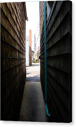Wood Canvas Print - Alley To Light by Stephanie Nugent