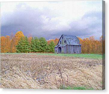Alone In The Field Canvas Print