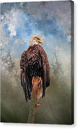 Canvas Print featuring the digital art American Bald Eagle by Mary Almond