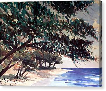 Anini Beach Canvas Print by Jon Shepodd