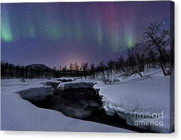 Aurora Borealis Over Blafjellelva River Canvas Print by Arild Heitmann