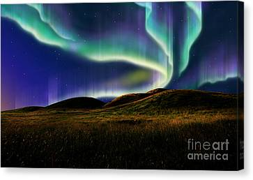 Aurora On Field Canvas Print