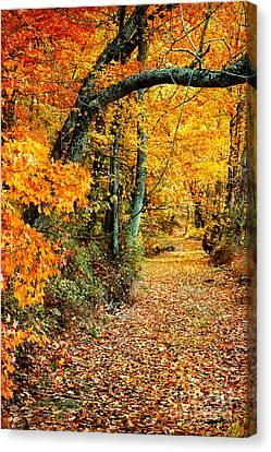 Autumn Pathway Canvas Print by Cheryl Davis
